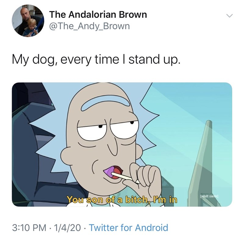 Cartoon - The Andalorian Brown @The_Andy_Brown My dog, every time I stand up. [adult swim) You son of a bitch, Pm in 3:10 PM · 1/4/20 · Twitter for Android