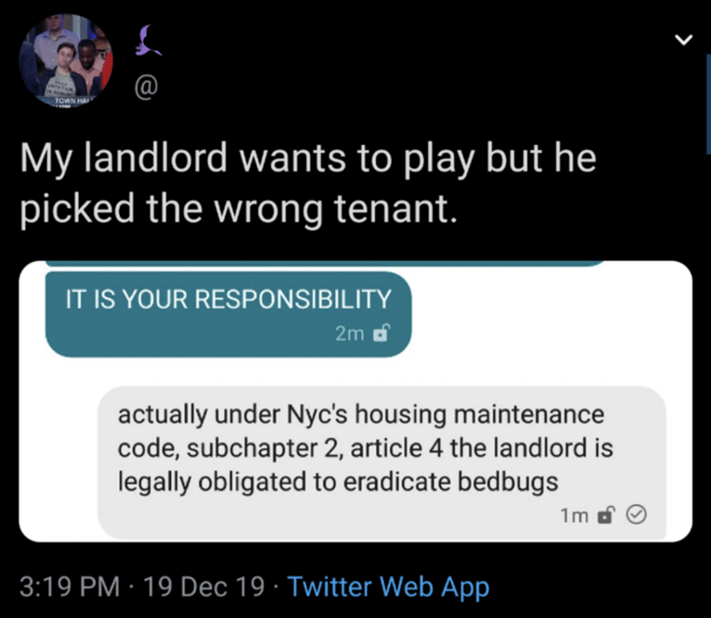 Text - TOWN HA My landlord wants to play but he picked the wrong tenant. IT IS YOUR RESPONSIBILITY 2m d actually under Nyc's housing maintenance code, subchapter 2, article 4 the landlord is legally obligated to eradicate bedbugs 1m 3:19 PM · 19 Dec 19 · Twitter Web App