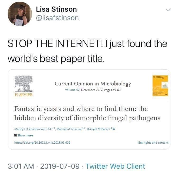 Text - Lisa Stinson @lisafstinson STOP THE INTERNET! I just found the world's best paper title. Ment Current Opinion in Microbiology Volume 52, December 2019, Pages 55-63 ELSEVIER Fantastic yeasts and where to find them: the hidden diversity of dimorphic fungal pathogens Marley C Caballero Van Dyke , Marcus M Teixeira 1,2, Bridget M Barker O Show more https://doi.org/10.1i016/j.mib.2019.05.002 Get rights and content 3:01 AM : 2019-07-09 · Twitter Web Client