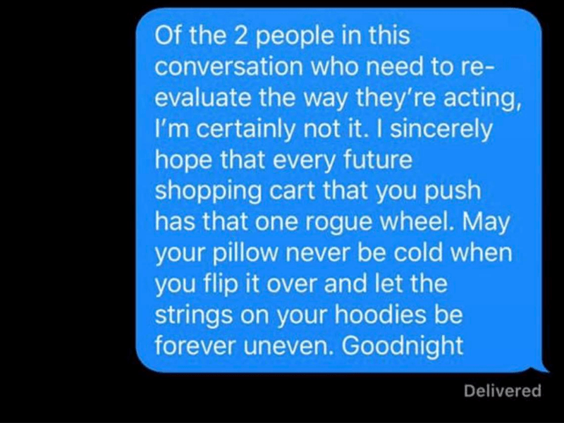 Text - Of the 2 people in this conversation who need to re- evaluate the way they're acting, I'm certainly not it. I sincerely hope that every future shopping cart that you push has that one rogue wheel. May your pillow never be cold when you flip it over and let the strings on your hoodies be forever uneven. Goodnight Delivered