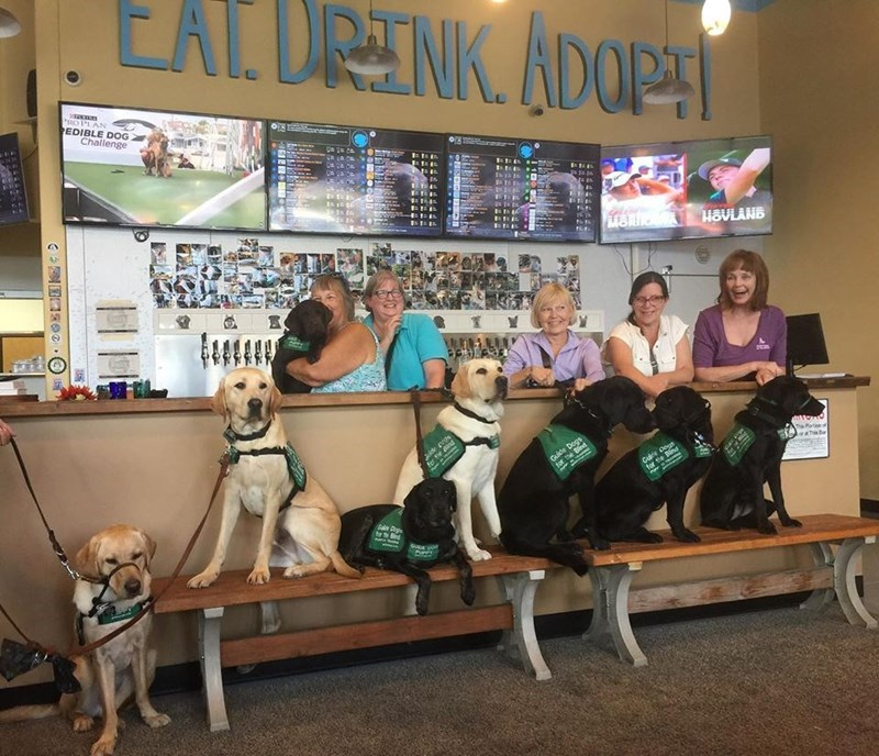 Dog - EAT. DRINK. ADOPT PROPLAN EDIBLE DOG Challenge MOR HOVLANB fer Guide Dogs for the Bld Gulte dops for the The Portion LoraThis Bar Dig
