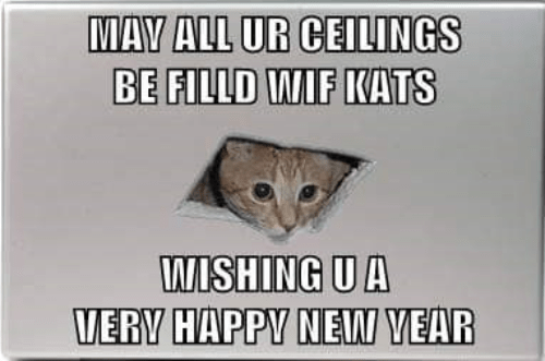 Photo caption - MAY ALL UR CEILINGS BE FILLD WIF KATS WISHING U A VERY HAPPY NEW YEAR