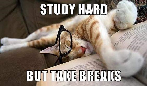 Photo caption - STUDY HARD BUT TAKE BREAKS