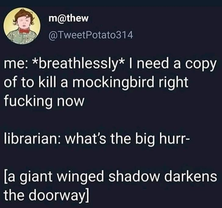 Text - m@thew @TweetPotato314 me: *breathlessly* I need a copy of to kill a mockingbird right fucking now librarian: what's the big hurr- [a giant winged shadow darkens the doorway]