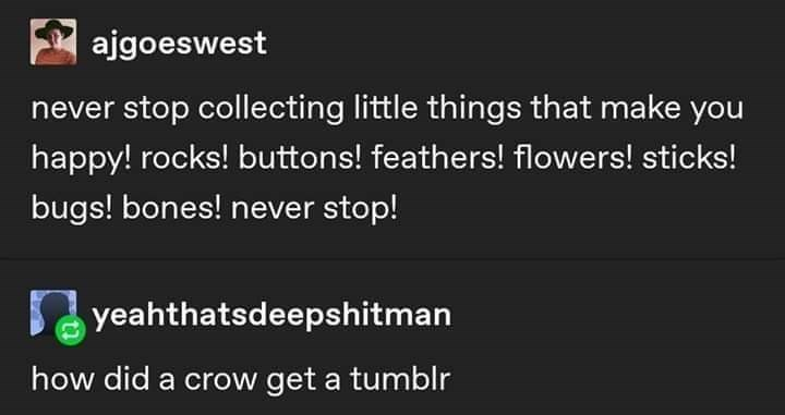 Text - A ajgoeswest never stop collecting little things that make you happy! rocks! buttons! feathers! flowers! sticks! bugs! bones! never stop! yeahthatsdeepshitman how did a crow get a tumblr