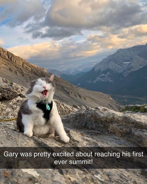 Mountainous landforms - Gary was pretty excited about reaching his first ever summit!