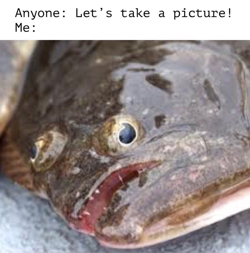 Fish - Anyone: Let's take a picture! Me: