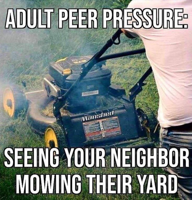Lawn - ADULT PEER PRESSURE: Manshed BE 1377 SEEING YOUR NEIGHBOR MOWING THEIR YARD