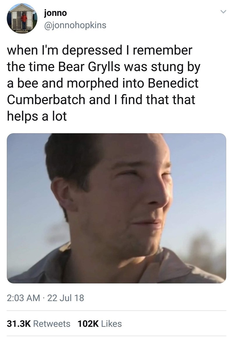 Face - jonno @jonnohopkins when I'm depressed I remember the time Bear Grylls was stung by a bee and morphed into Benedict Cumberbatch and I find that that helps a lot 2:03 AM · 22 Jul 18 31.3K Retweets 102K Likes