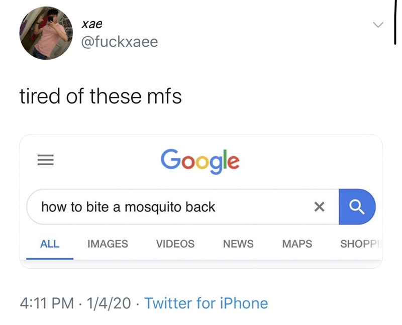 Text - хае @fuckxaee tired of these mfs Google how to bite a mosquito back SHOPPI MAPS ALL IMAGES VIDEOS NEWS 4:11 PM · 1/4/20 · Twitter for iPhone