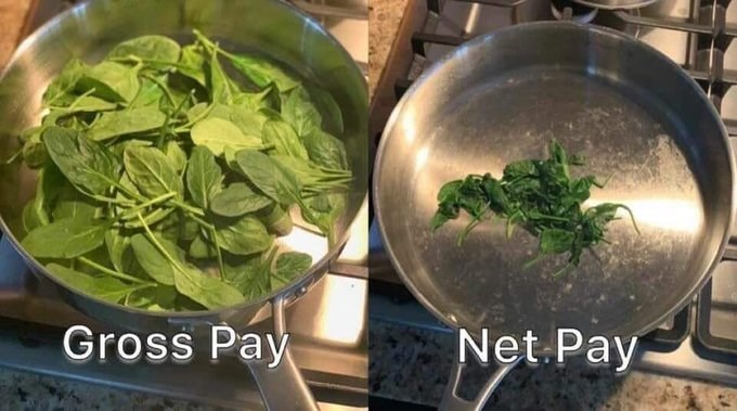 Food - Net Pay Gross Pay