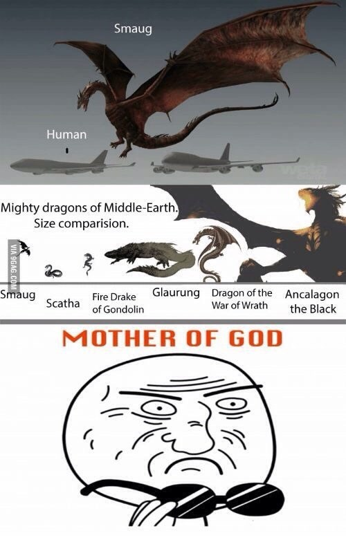 Organism - Smaug Human Mighty dragons of Middle-Earth. Size comparision. Glaurung Smaug Dragon of the War of Wrath Ancalagon Fire Drake of Gondolin Scatha the Black MOTHER OF GOD VIA 9GAG.CO