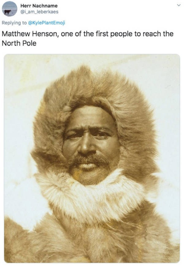 Text - Herr Nachname @iam_leberkaes Replying to @KylePlantEmoji Matthew Henson, one of the first people to reach the North Pole
