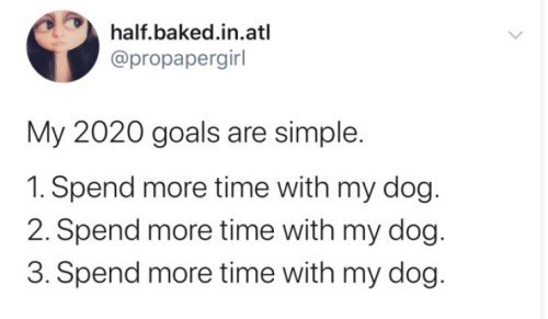 Text - half.baked.in.atl @propapergirl My 2020 goals are simple. 1. Spend more time with my dog. 2. Spend more time with my dog. 3. Spend more time with my dog.