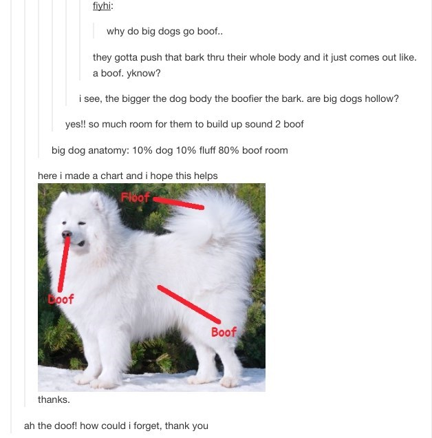 Mammal - fiyhi: why do big dogs go boof.. they gotta push that bark thru their whole body and it just comes out like. a boof. yknow? i see, the bigger the dog body the boofier the bark. are big dogs hollow? yes!! so much room for them to build up sound 2 boof big dog anatomy: 10% dog 10% fluff 80% boof room here i made a chart and i hope this helps FI8of Loof Boof thanks. ah the doof! how could i forget, thank you