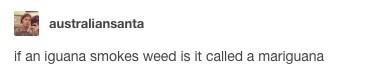 Text - australiansanta if an iguana smokes weed is it called a mariguana