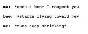 Text - me: *sees a bee* I respect you bee: *starts flying toward me* *runs away shrieking*