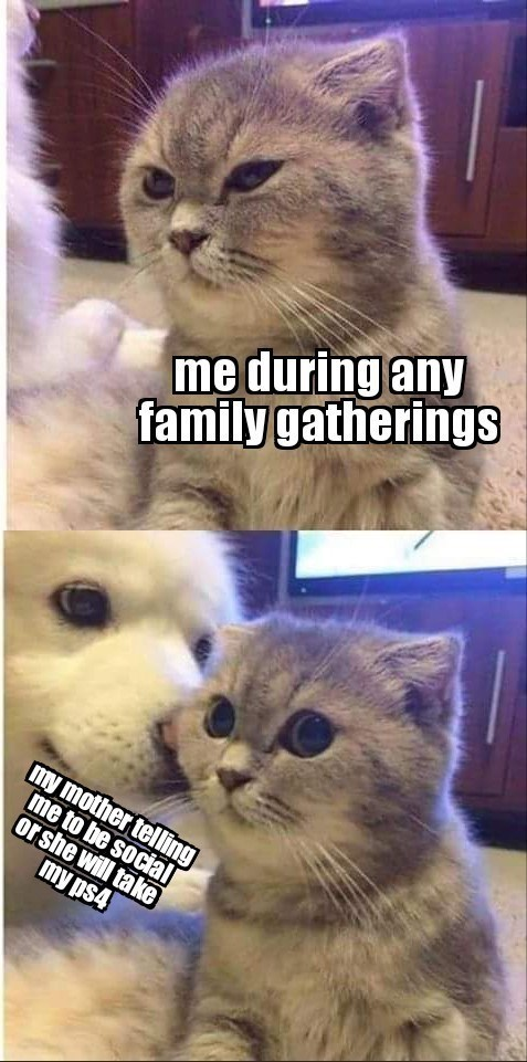 cat squinting looking annoyed: me during any family gatherings. same cat with its eyes wide open while a dog appears to whisper in its ear: my mother telling me to be social or she will take my ps4