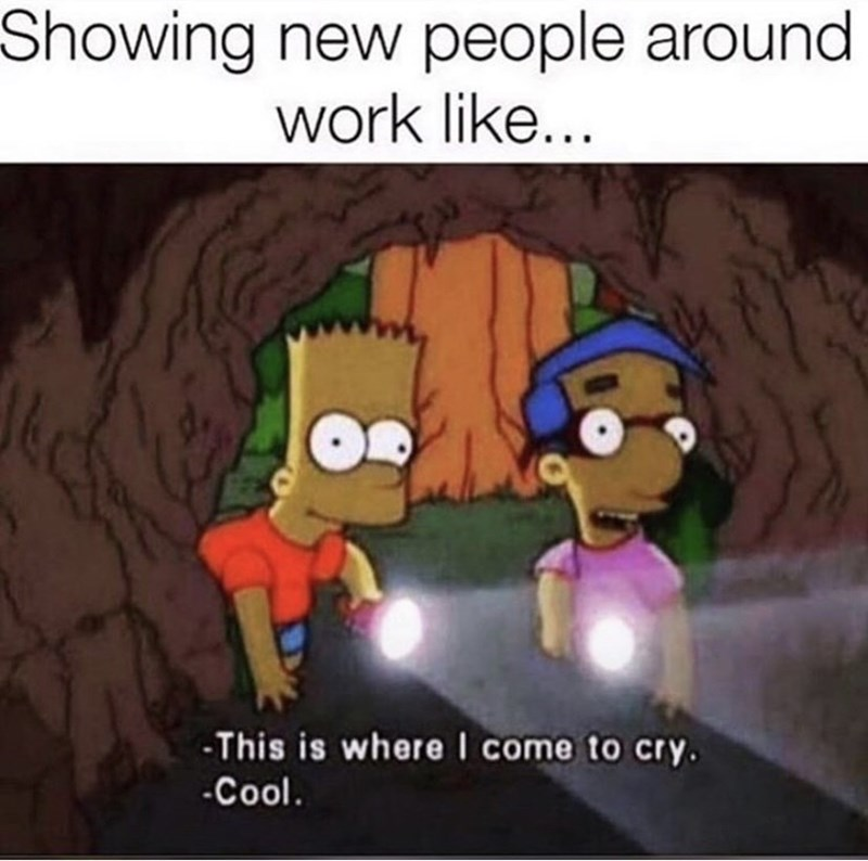 Cartoon - Showing new people around work like... -This is where I come to cry. -Cool.