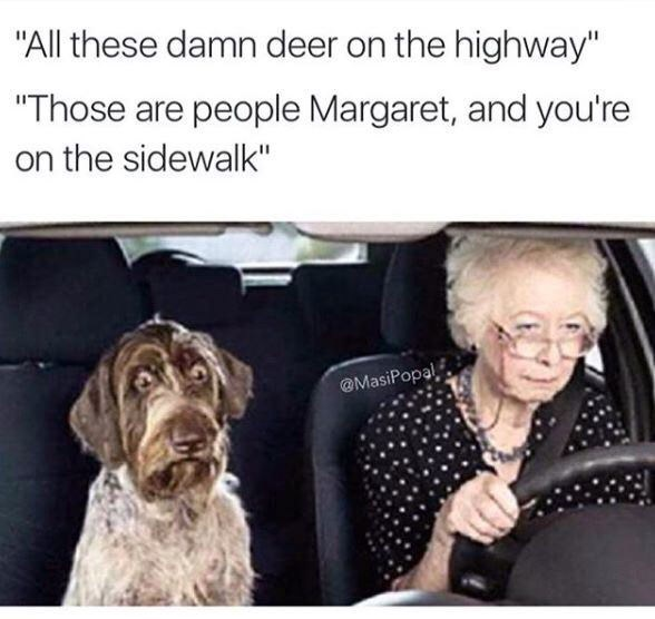 "Dog - ""All these damn deer on the highway"" ""Those are people Margaret, and you're on the sidewalk"" @MasiPopal"