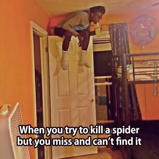 Hardwood - When you try to kill a spider but you miss and can't find it MemeCenter.com