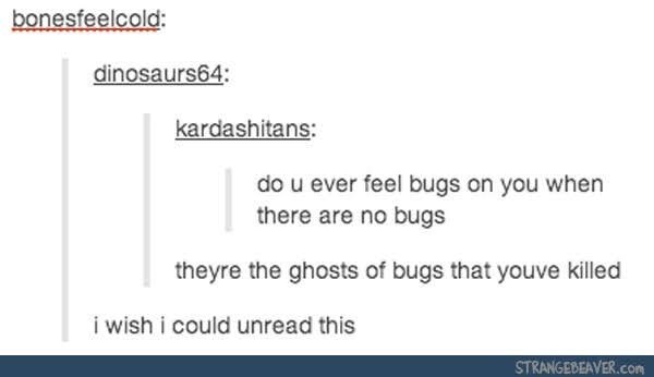 Text - bonesfeelcold: dinosaurs64: kardashitans: do u ever feel bugs on you when there are no bugs theyre the ghosts of bugs that youve killed i wish i could unread this STRANGEBEAVER.com