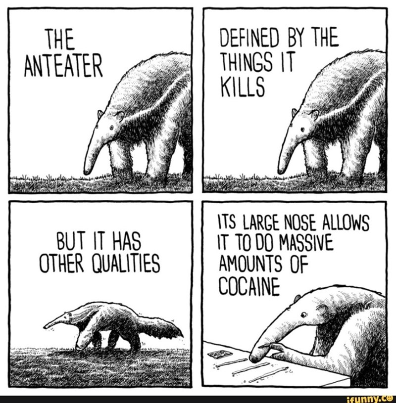 Vertebrate - DEFINED BY THE THINGS IT KILLS THE ANTEATER ITS LARGE NOSE ALLOWS IT TO DO MASSIVE AMOUNTS OF COCAINE BUT IT HAS OTHER QUALITIES ifunny.co