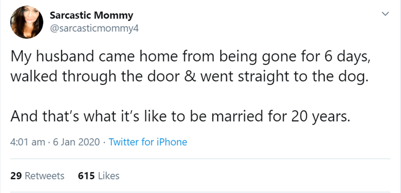 Text - Sarcastic Mommy @sarcasticmommy4 My husband came home from being gone for 6 days, walked through the door & went straight to the dog. And that's what it's like to be married for 20 years. 4:01 am · 6 Jan 2020 · Twitter for iPhone 615 Likes 29 Retweets