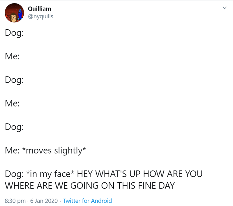 Text - Quilliam @nyquills Dog: Me: Dog: Me: Dog: Me: *moves slightly* Dog: *in my face* HEY WHAT'S UP HOW ARE YOU WHERE ARE WE GOING ON THIS FINE DAY 8:30 pm · 6 Jan 2020 · Twitter for Android