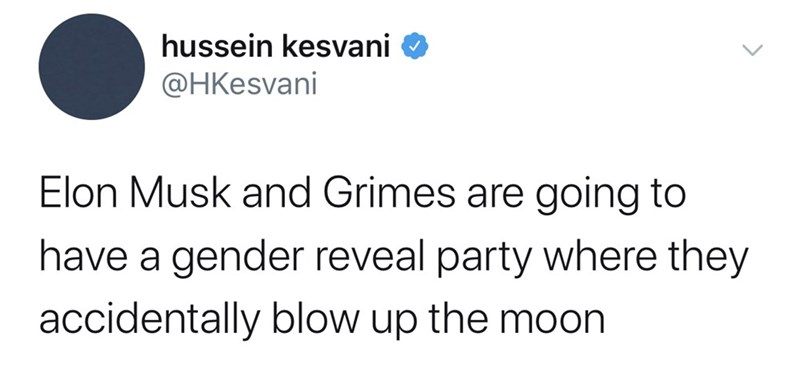 Text - hussein kesvani @HKesvani Elon Musk and Grimes are going to have a gender reveal party where they accidentally blow up the moon