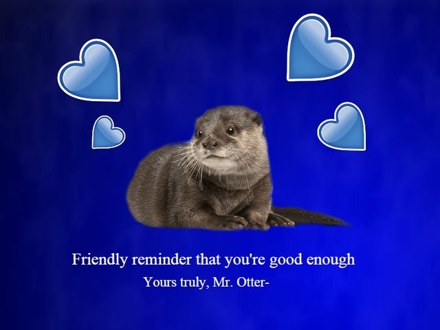 Text - Friendly reminder that you're good enough Yours truly, Mr. Otter-