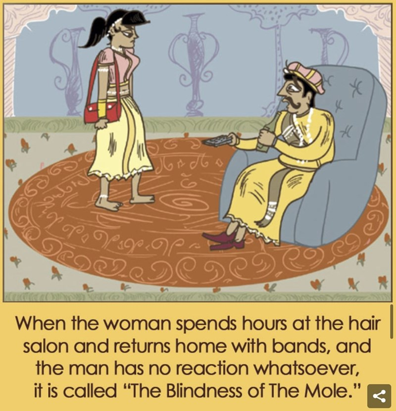 "Cartoon - When the woman spends hours at the hair salon and returns home with bands, and the man has no reaction whatsoever, it is called ""The Blindness of The Mole."""