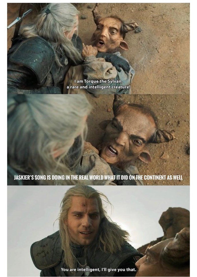 Whole Crap Ton Of Witcher Memes For The Addicts Who Can T Get
