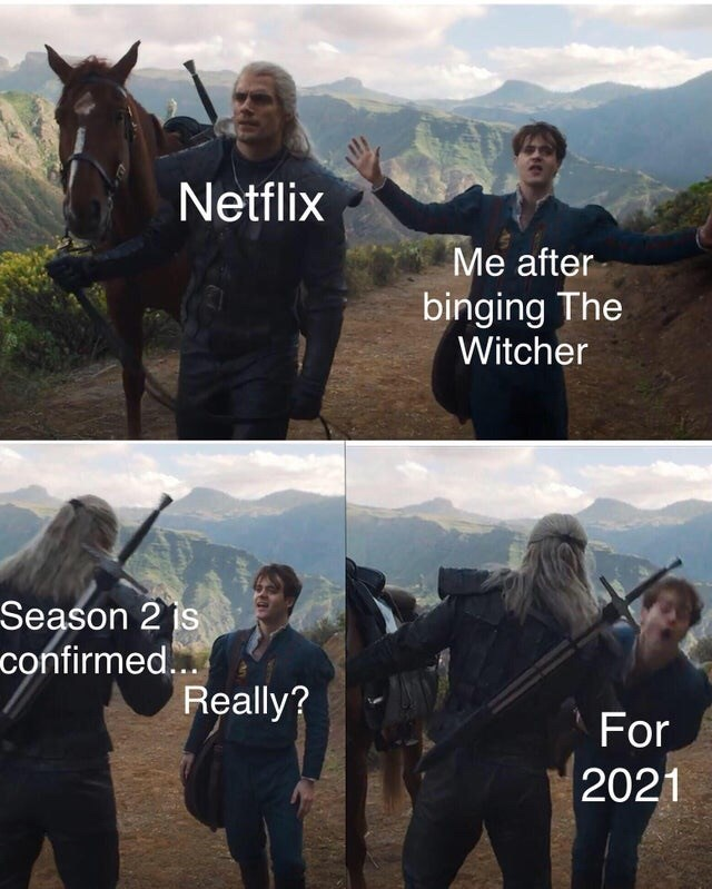 Horse - Netflix Me after binging The Witcher Season 2 is confirmed... Really? For 2021