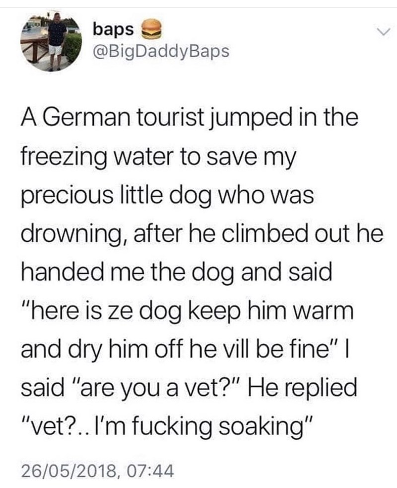 """Text - baps @BigDaddyBaps A German tourist jumped in the freezing water to save my precious little dog who was drowning, after he climbed out he handed me the dog and said """"here is ze dog keep him warm and dry him off he vill be fine"""" 