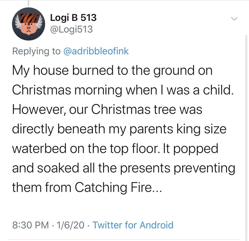 Text - Logi B 513 @Logi513 Replying to @adribbleofink My house burned to the ground on Christmas morning when I was a child. However, our Christmas tree was directly beneath my parents king size waterbed on the top floor. It popped and soaked all the presents preventing them from Catching Fire... 8:30 PM · 1/6/20 · Twitter for Android