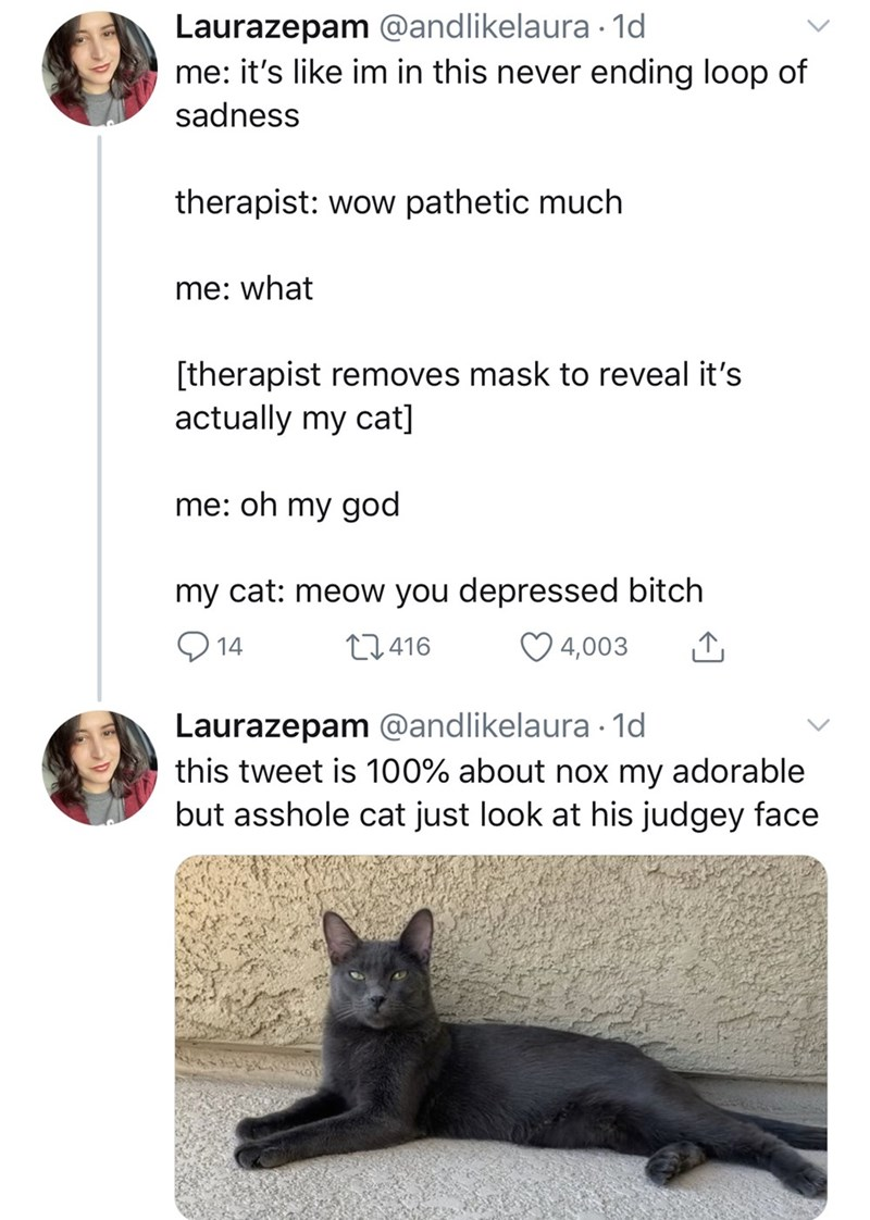 Cat - Laurazepam @andlikelaura · 1d me: it's like im in this never ending loop of sadness therapist: wow pathetic much me: what [therapist removes mask to reveal it's actually my cat] me: oh my god my cat: meow you depressed bitch Q 14 27416 4,003 Laurazepam @andlikelaura · 1d this tweet is 100% about nox my adorable but asshole cat just look at his judgey face