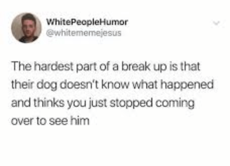 Text - WhitePeopleHumor @whitememejesus The hardest part of a break up is that their dog doesn't know what happened and thinks you just stopped coming over to see him