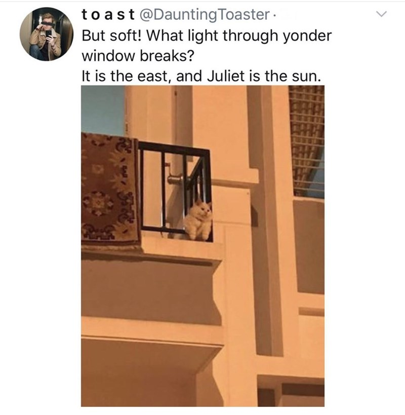 Window - to ast @Daunting Toaster · But soft! What light through yonder window breaks? It is the east, and Juliet is the sun.