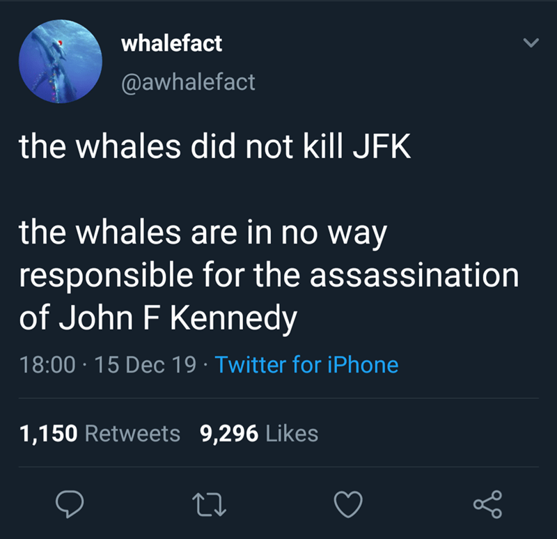 Text - whalefact @awhalefact the whales did not kill JFK the whales are in no way responsible for the assassination of John F Kennedy 18:00 · 15 Dec 19 · Twitter for iPhone 1,150 Retweets 9,296 Likes