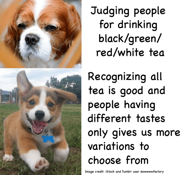 Dog - Judging people for drinking black/green/ red/white tea Recognizing all tea is good and people having different tastes only gives us more variations to choose from Image credit: istock and Tumblr user dawwwwfactory