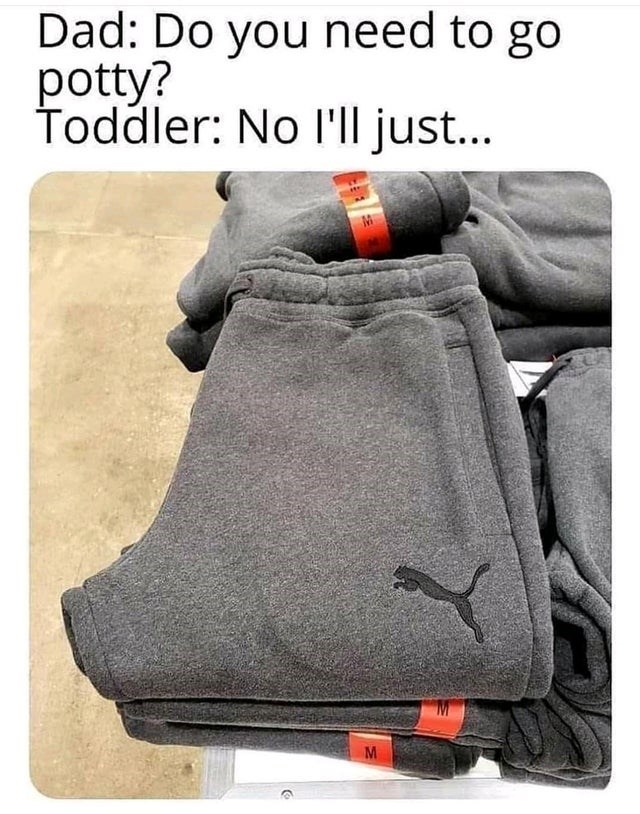 Bag - Dad: Do you need to go potty? Toddler: No I'll just...