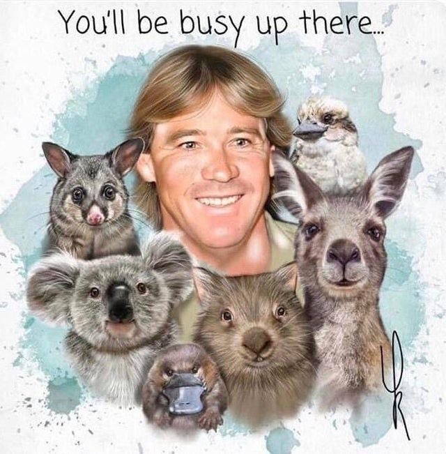 Marsupial - You'll be busy up there.