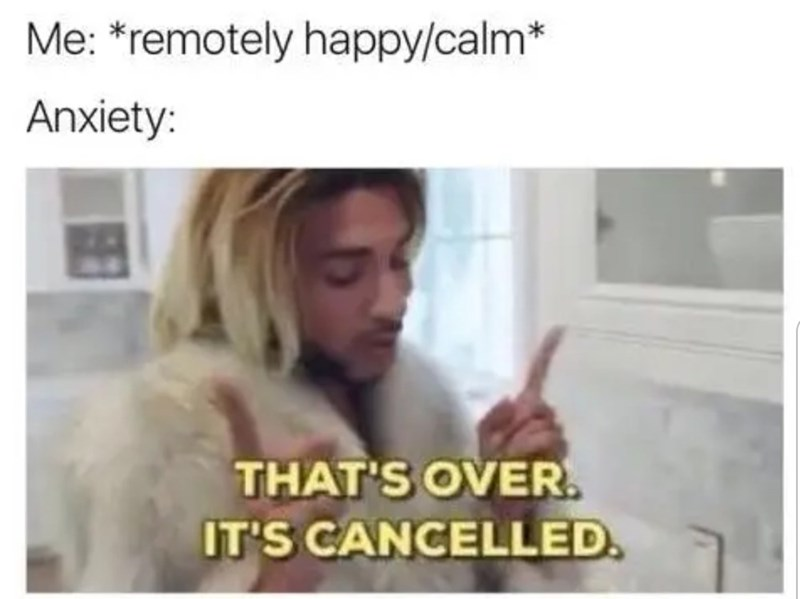 Hair - Me: *remotely happy/calm* Anxiety: THAT'S OVER. IT'S CANCELLED.