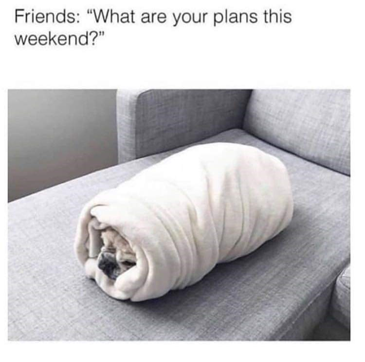 "Bedding - Friends: ""What are your plans this weekend?"""
