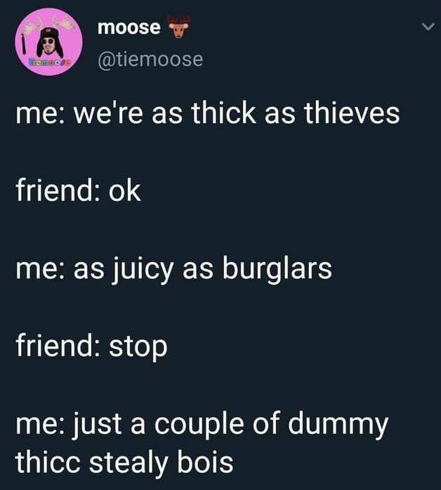 Text - moose @tiemoose momaos me: we're as thick as thieves friend: ok me: as juicy as burglars friend: stop me: just a couple of dummy thicc stealy bois