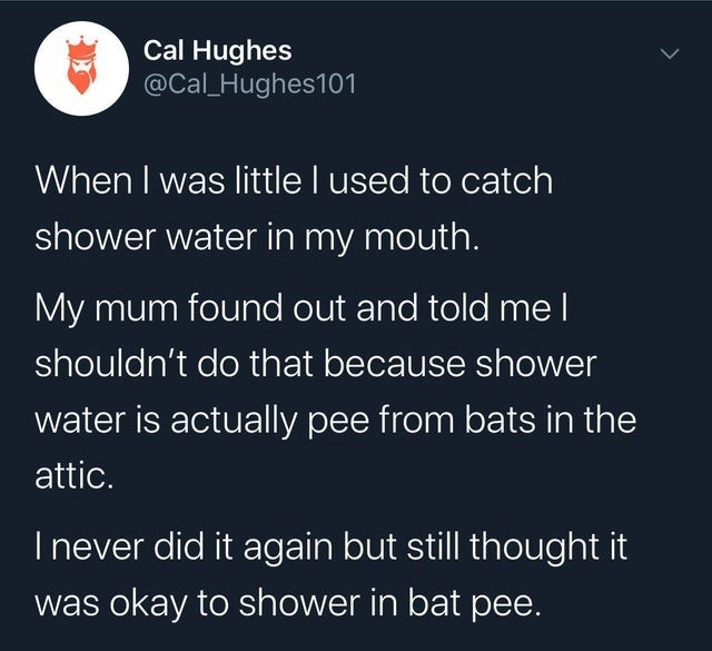 Text - Cal Hughes @Cal_Hughes101 When I was little I used to catch shower water in my mouth. My mum found out and told me l shouldn't do that because shower water is actually pee from bats in the attic. I never did it again but still thought it was okay to shower in bat pee.