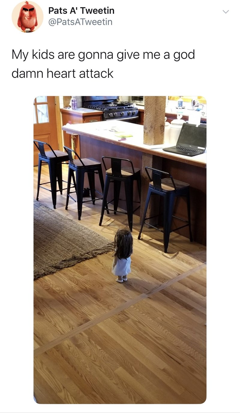 Laminate flooring - Pats A' Tweetin @PatsATweetin My kids are gonna give me a god damn heart attack