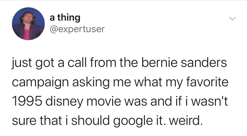 Text - a thing @expertuser just got a call from the bernie sanders campaign asking me what my favorite 1995 disney movie was and if i wasn't sure that i should google it. weird.