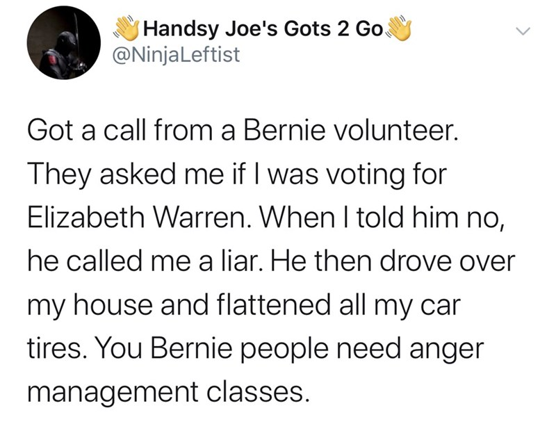 Text - Handsy Joe's Gots 2 Go @NinjaLeftist Got a call from a Bernie volunteer. They asked me if I was voting for Elizabeth Warren. When I told him no, he called me a liar. He then drove over my house and flattened all my car tires. You Bernie people need anger management classes.
